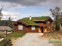 строительство деревянных домов ВИСМА-ДОМ