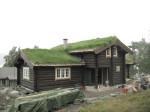 деревянный дом тронд